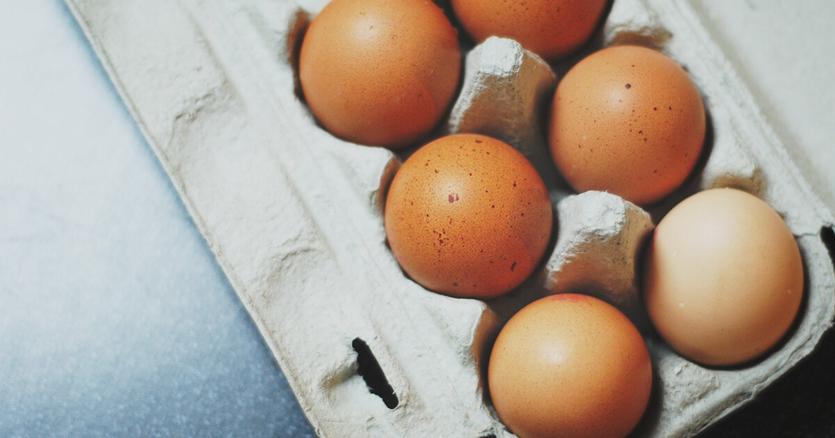 feature-image_trained-staff-egg